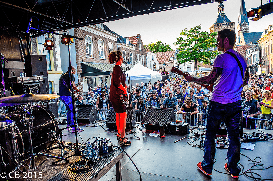 Zippy Leaps - Culemborg Blues 2015
