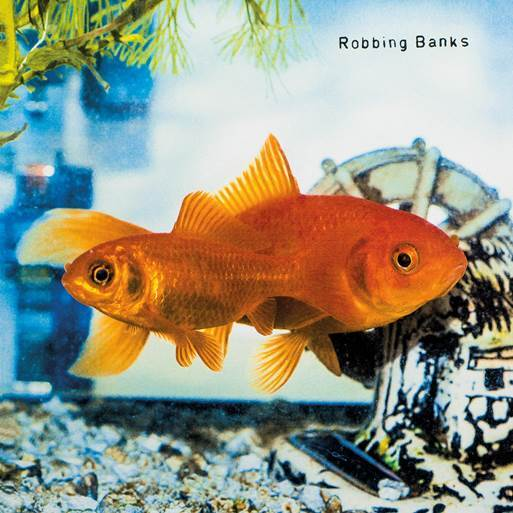 Robbing Banks - This and That